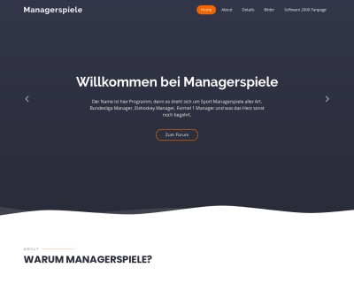 Managerspiele